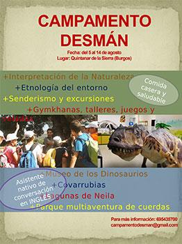 CAMPAMENTO DESM�N